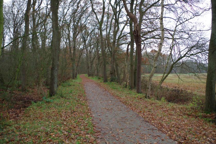 voetzoekers – Familiepad Drentsche Aa – Route 7