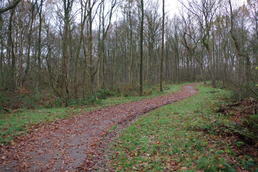 voetzoekers – Familiepad Drentsche Aa – Route 8