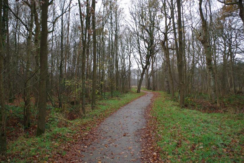 voetzoekers – Familiepad Drentsche Aa – Route 9