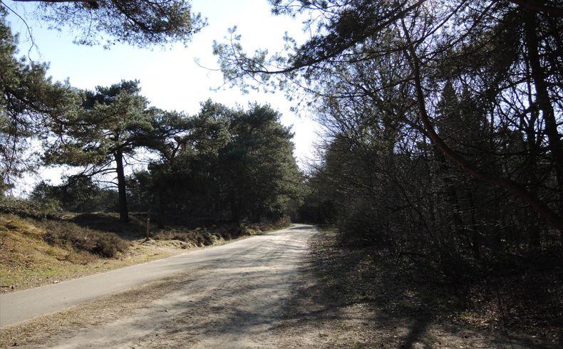 voetzoekers – Gasterse Duinen – Route 9