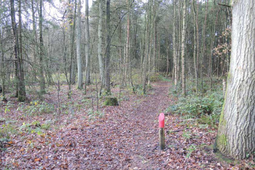voetzoekers Gees rode route 2