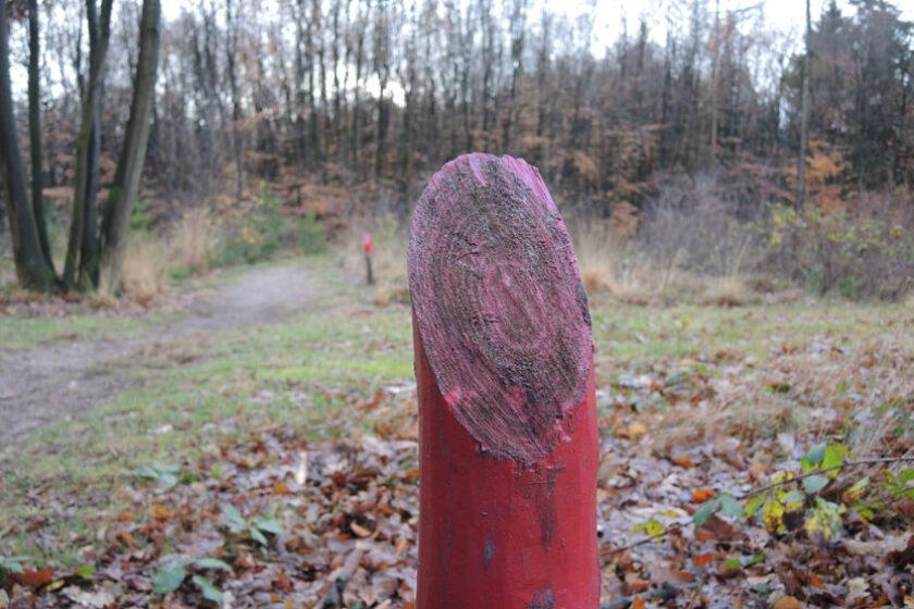 voetzoekers Gees rode route 7