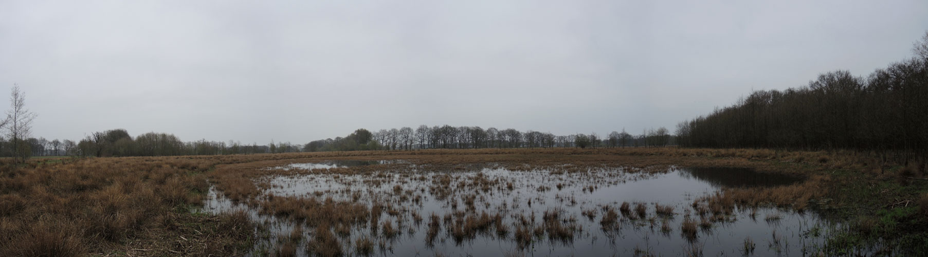 voetzoekers-geeserstroom-panorama-ven