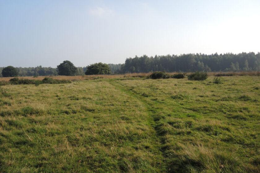 voetzoekers Landgoed Vossenberg 11