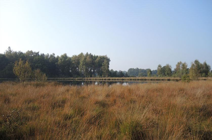 voetzoekers Landgoed Vossenberg 12