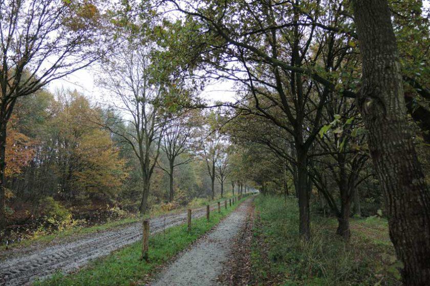 voetzoekers Landgoed Vossenberg 2