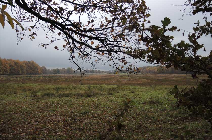 voetzoekers Landgoed Vossenberg 4