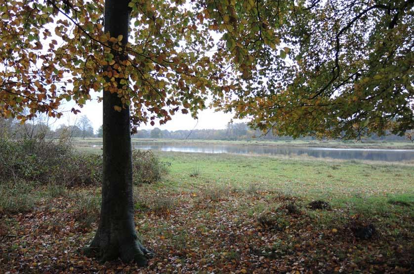voetzoekers Landgoed Vossenberg 7