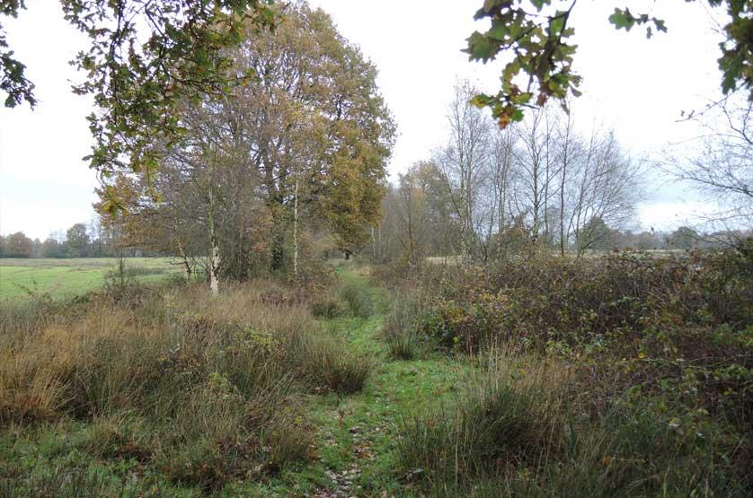 voetzoekers Landgoed Vossenberg 9