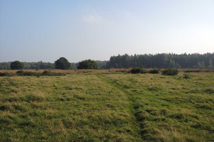 voetzoekers-landgoed-vossenberg-hamveld