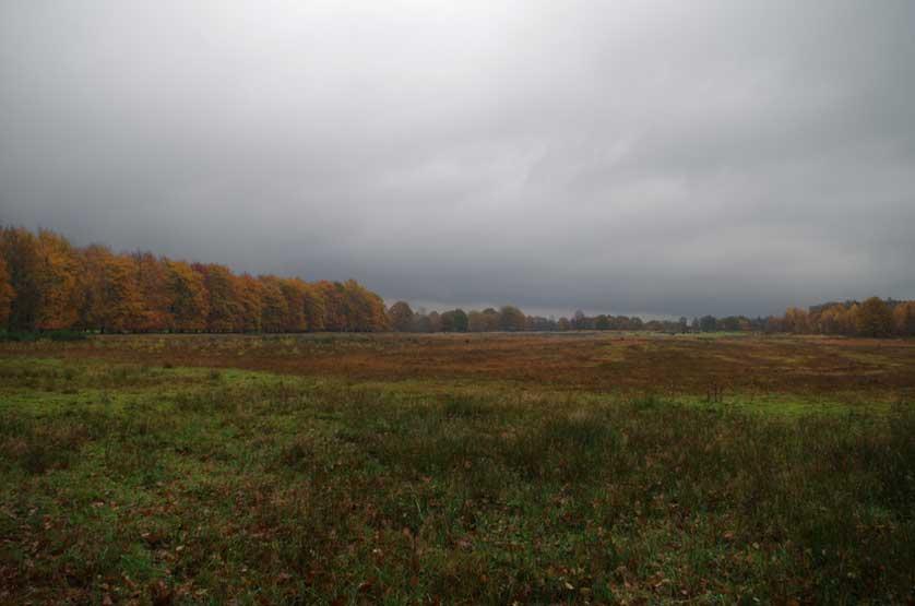 voetzoekers-landgoed-vossenberg-ontginningsgebied