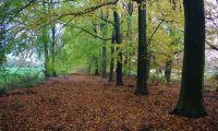 voetzoekers-landgoed-vossenberg-top-afbeelding