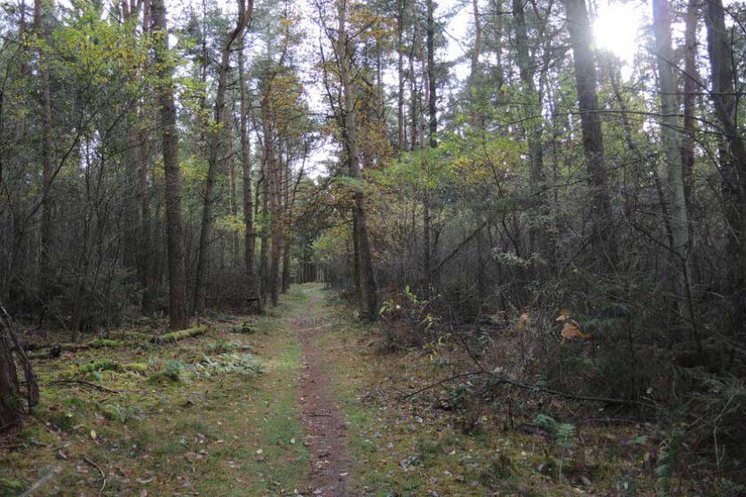 voetzoekers Twee Gemeenten wandeling 9