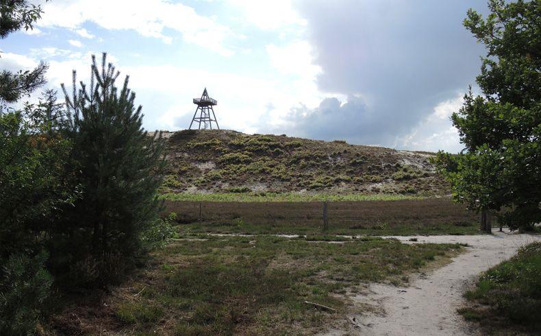 voetzoekers – Uitkijktoren Afferden – Boven op de duin