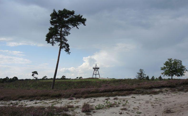 voetzoekers – Uitkijktoren Afferden – De toren vanaf de heide