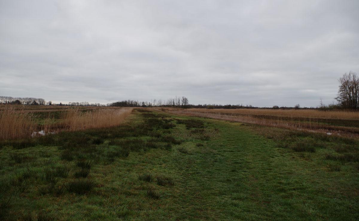 4 km – Veenweidepad