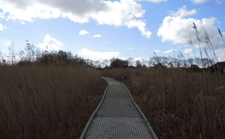 voetzoekers – Vlonderpad De Wieden 9