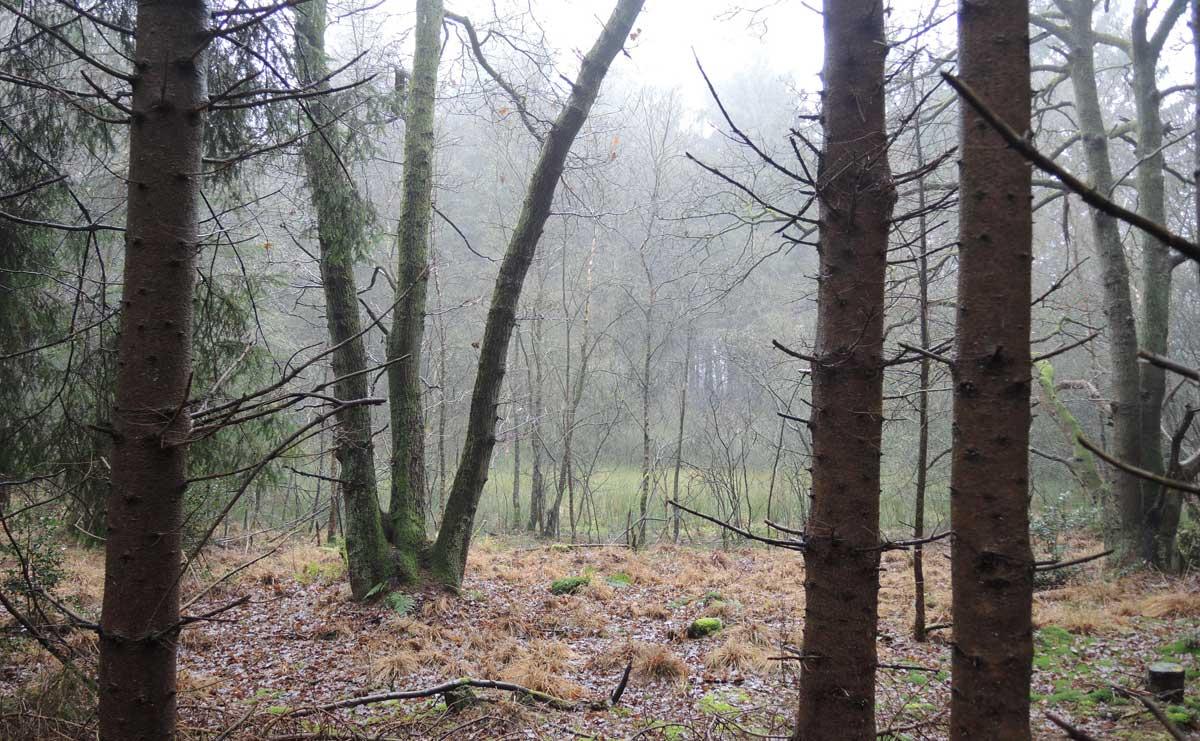 Landgoed-Boschoord-witte-route-fort-voetzoekers