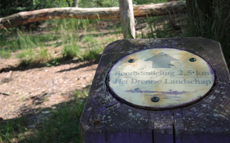 het-kremboongbos-start-route-voetzoekers