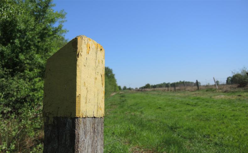 voetzoekers-bargerveen-geel-routepaal