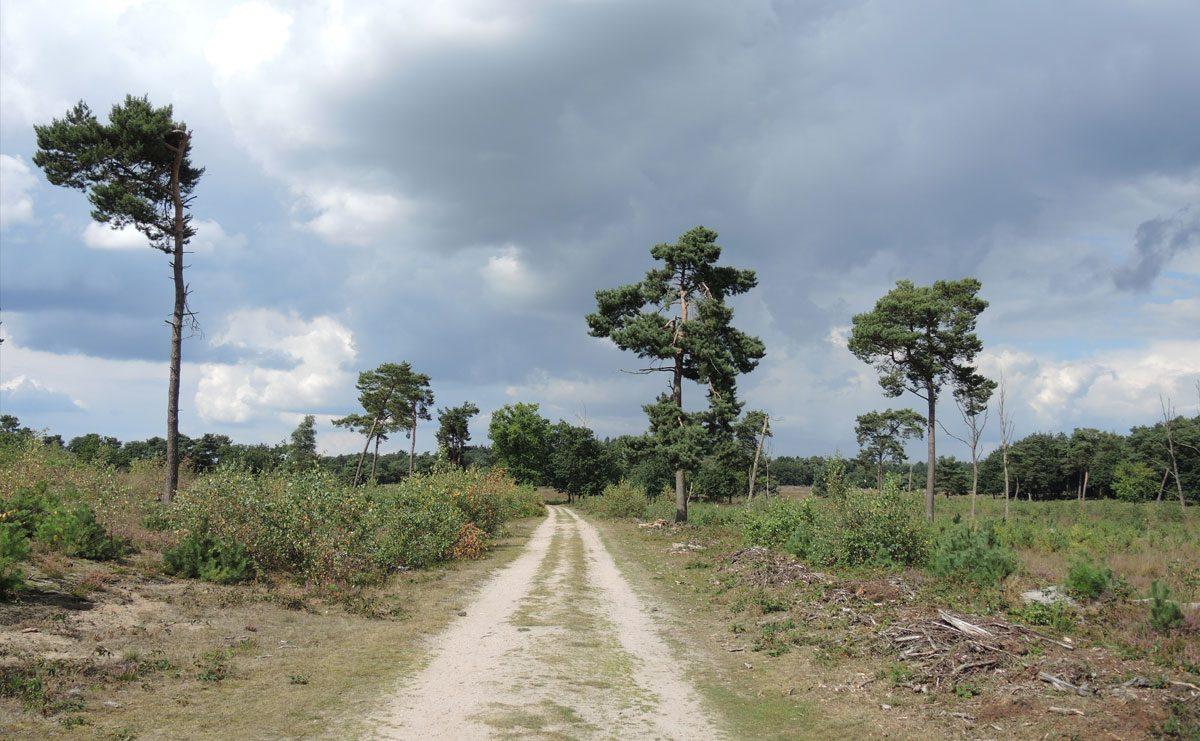 Rivierduinenroute