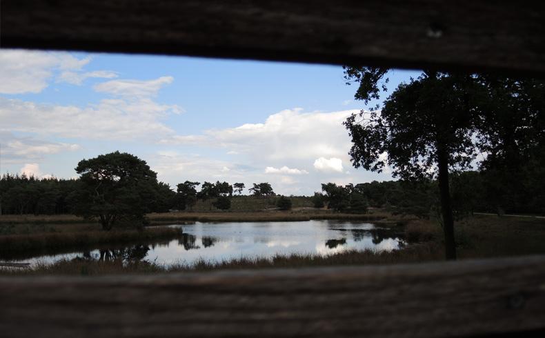 rivierduinenroute-vogelkijkhut-zevenboomsven-voetzoekers