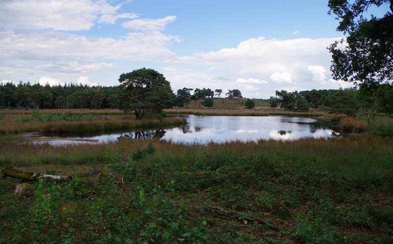 rivierduinenroute-zevenboomsven-II-voetzoekers