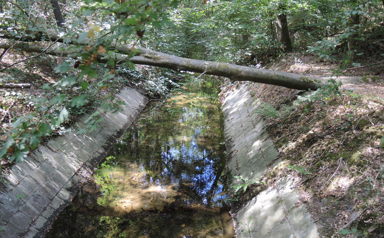 havenroute-waterloopbos-betontegels-voetzoekers