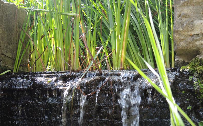 havenroute-waterloopbos-stromend-water-voetzoekers