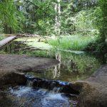 havenroute-waterloopbos-voetzoekers
