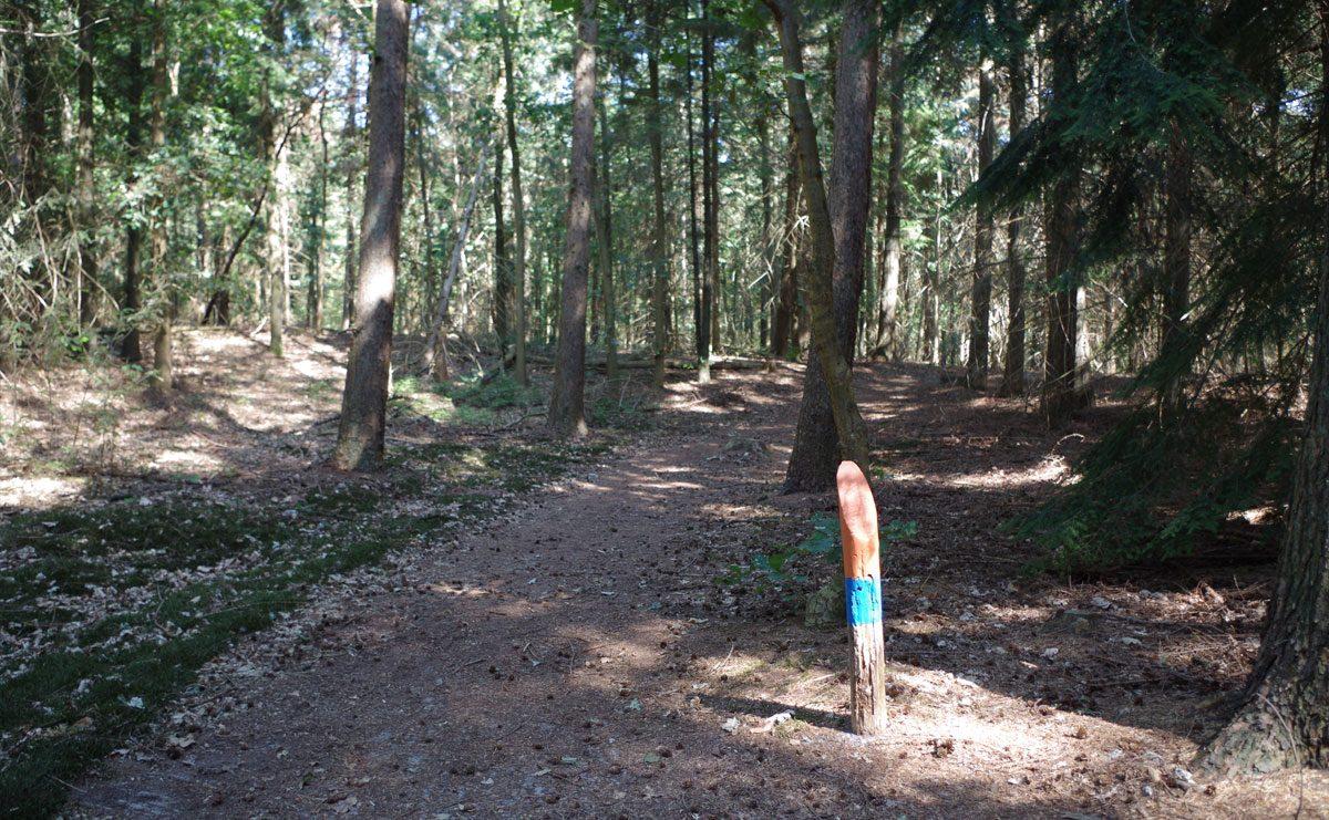 Natuurbelevingspad Westerwolde