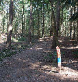 natuurbelevingspad-westerwolde-markering-voetzoekers