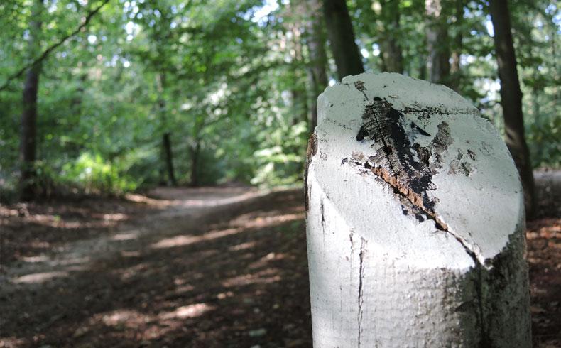 filosofenroute-markering-route-voetzoekers