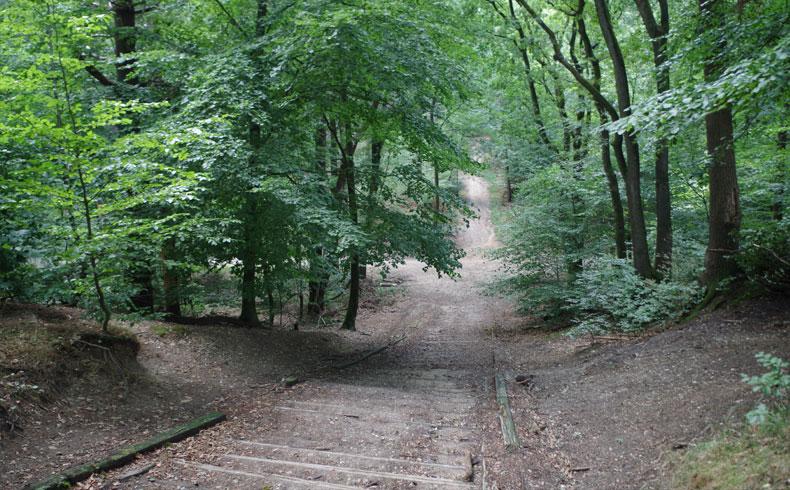 filosofenroute-toegang-bos-bij-avonturenbos-voetzoekers