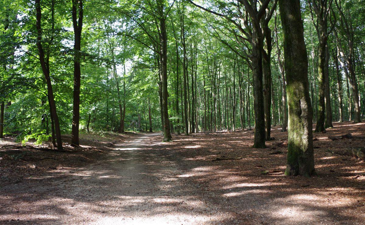 3.5 km – Filosofenroute