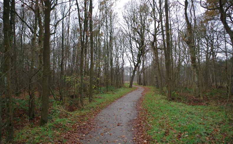 voetzoekers-familiepad-drentsche-aa-betonnen-pad