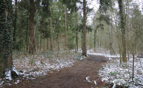 3 km – Noordbargerbos-Noord