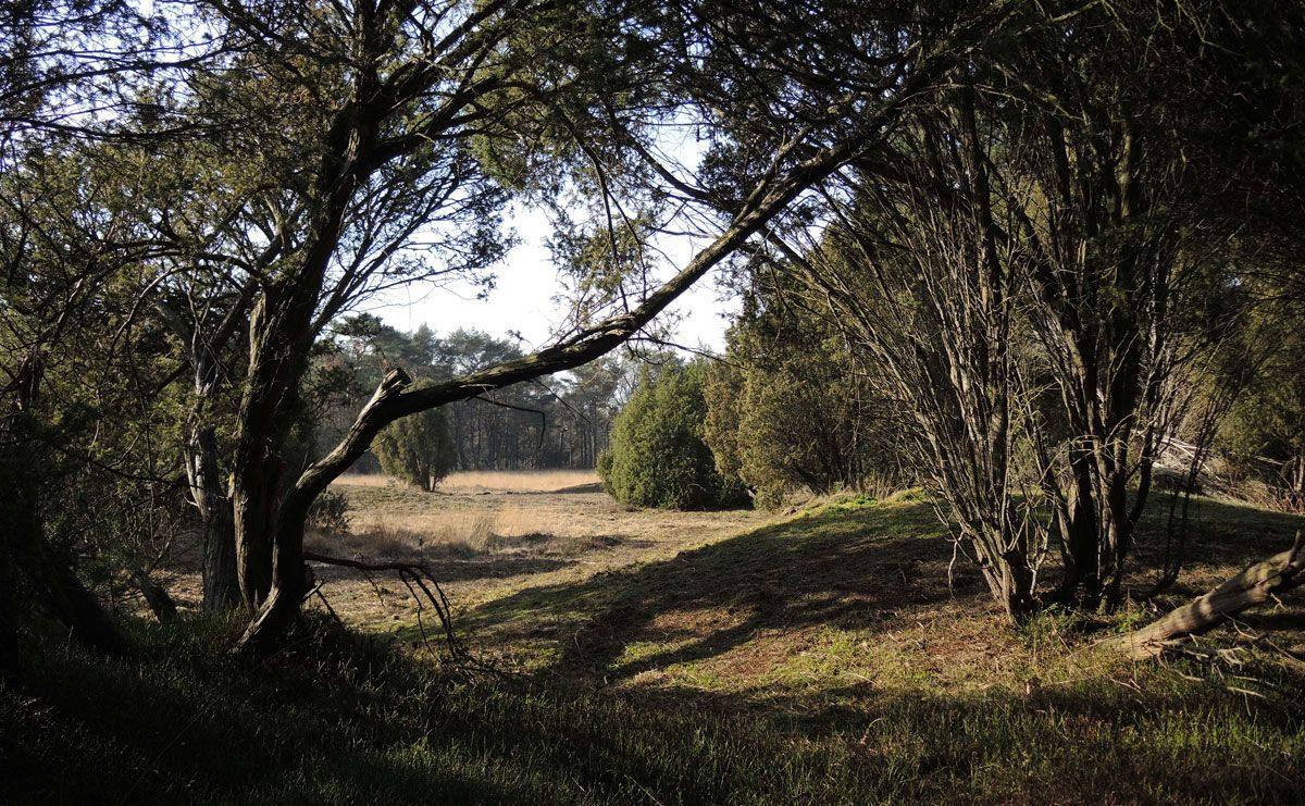 2.5 km – Kampsheide