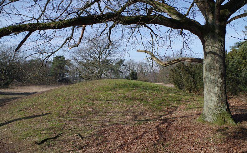 voetzoekers-kampsheide-grafheuvel