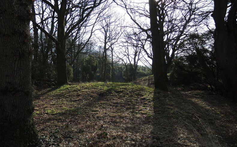 voetzoekers-kampsheide-grafheuvels