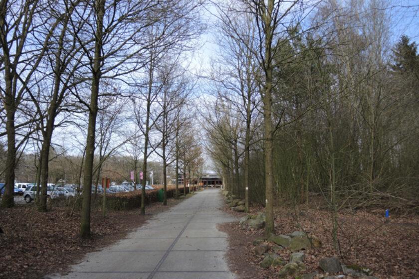 12 – Familiepad Drents-Friese Wold – voetzoekers