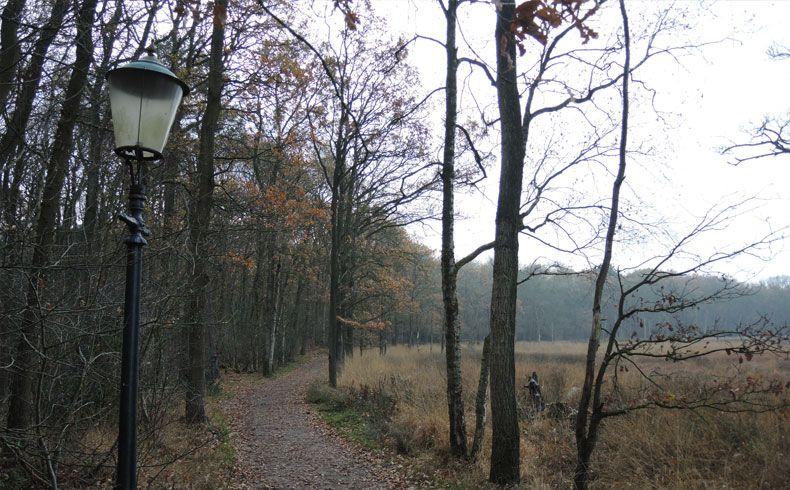 voetzoekers-appelbergen-lantaarnpaal-langs-het-pad