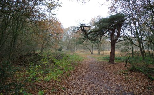 3.5 km – Appelbergen
