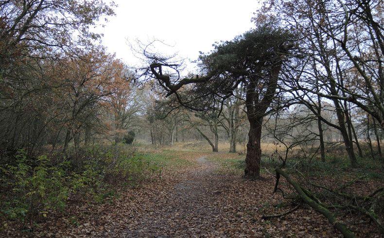 voetzoekers-appelbergen-start-route