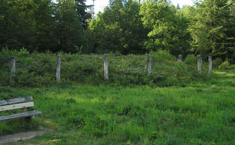 voetzoekers-archeologische-route-sleenerzand-bankje-bij-de-galgenberg