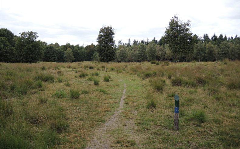 voetzoekers-archeologische-route-sleenerzand-markering-route