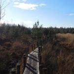 voetzoekers-boswandeling-spier