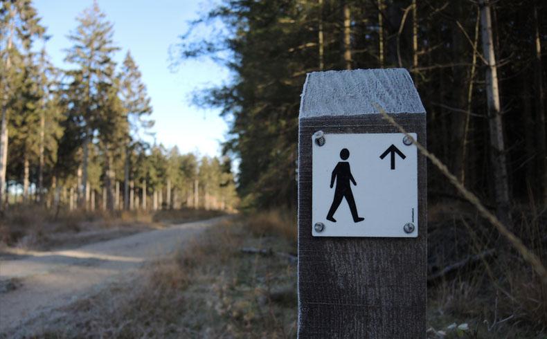 voetzoekers-boswandeling-spier-routepaal