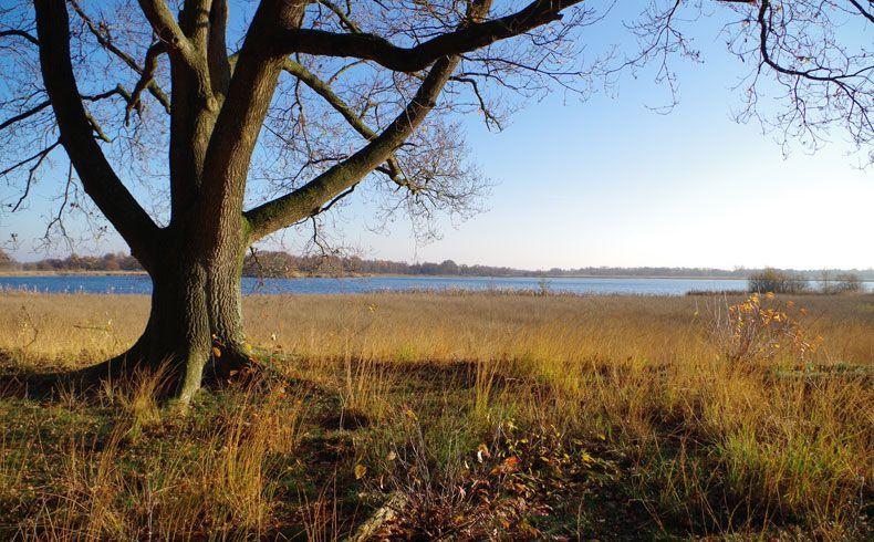 voetzoekers-esmeerroute-esmeer-2