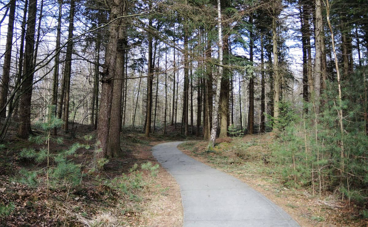 2.2 km – Familiepad Drents-Friese Wold